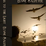 Flying to the Light by Elyse Salpeter on Indie Authors TV from the Independent Author Index